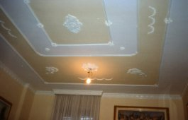 Ceilings, stucco and false ceilings